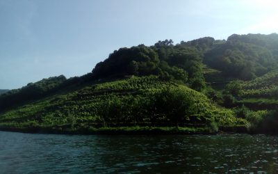 Ribeira Sacra, Paraíso Natural