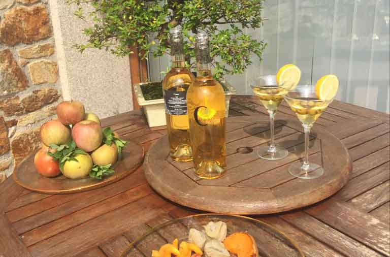 El concepto de aperitivo