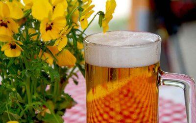 Las Cervezas, aperitivos pensados para refrescar