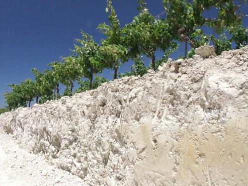 El enyesado, una práctica vinícola genuinamente jerezana